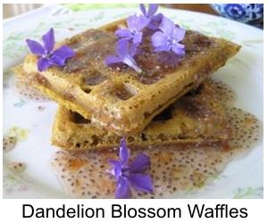 dandelion_waffles